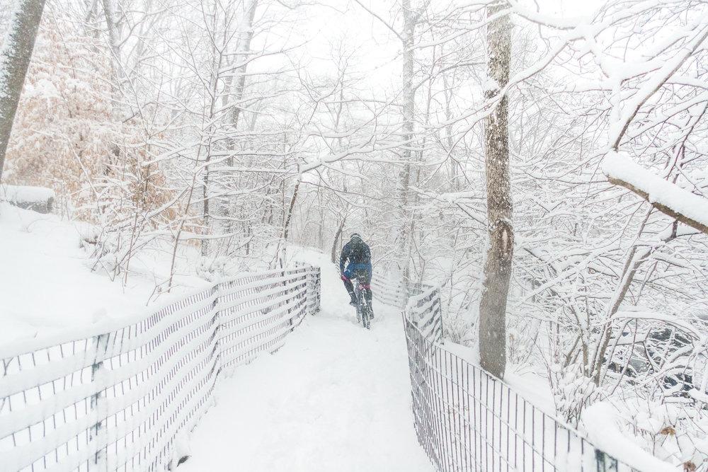 170209_CP_snowstorm00170.jpg