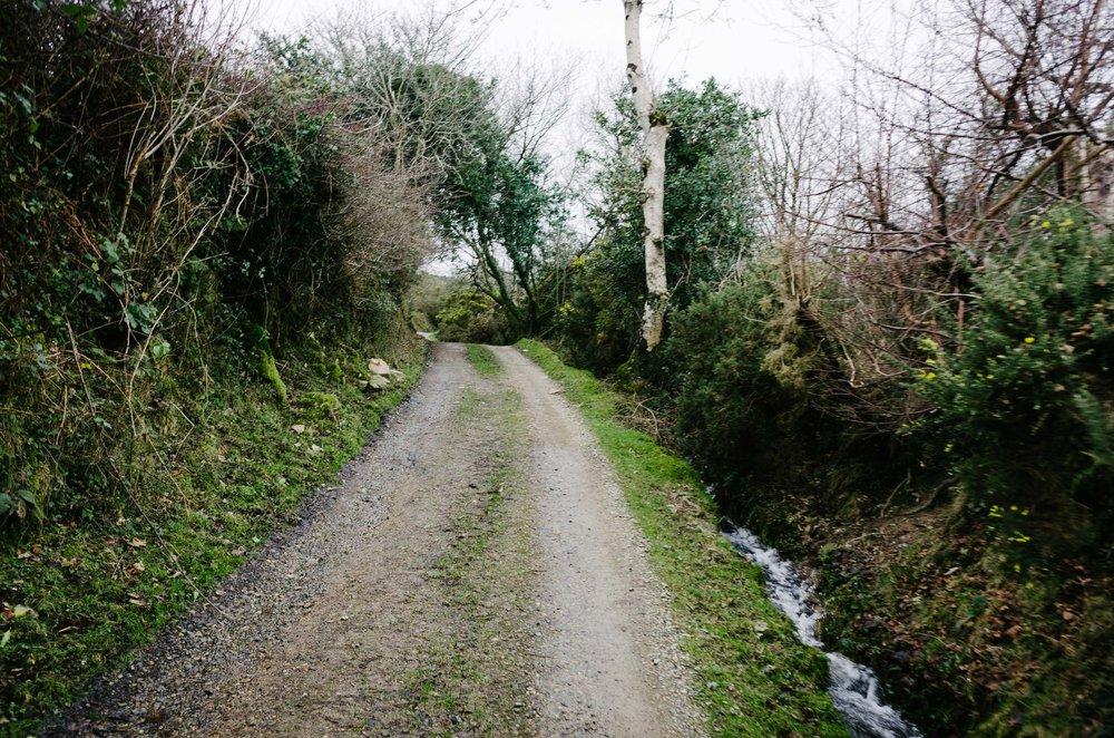 Mountain Biking in Wales-1015.jpg