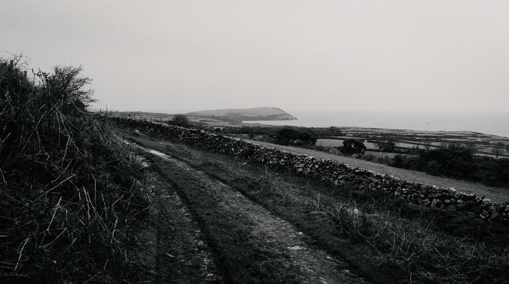 Mountain Biking in Wales-1017.jpg