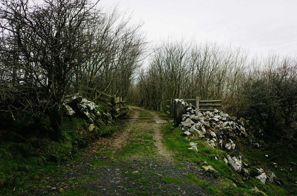 Mountain Biking in Wales-1019.jpg