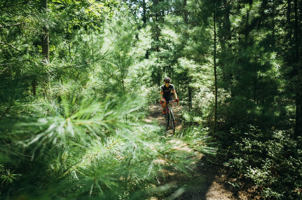 The terrain and flora varies on the trails but the pine barren sections are some of our favorite - fast, swoopy and smooth.