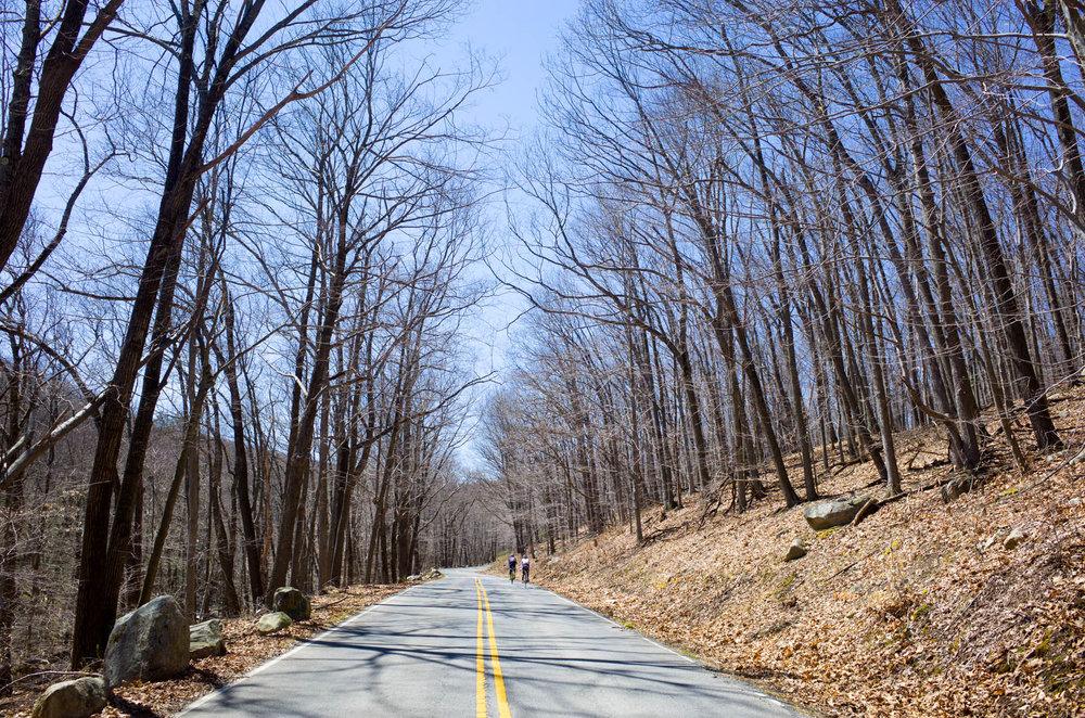 Photo Rhetoric Bear Mountain Spring Classic Recon-5012.jpg