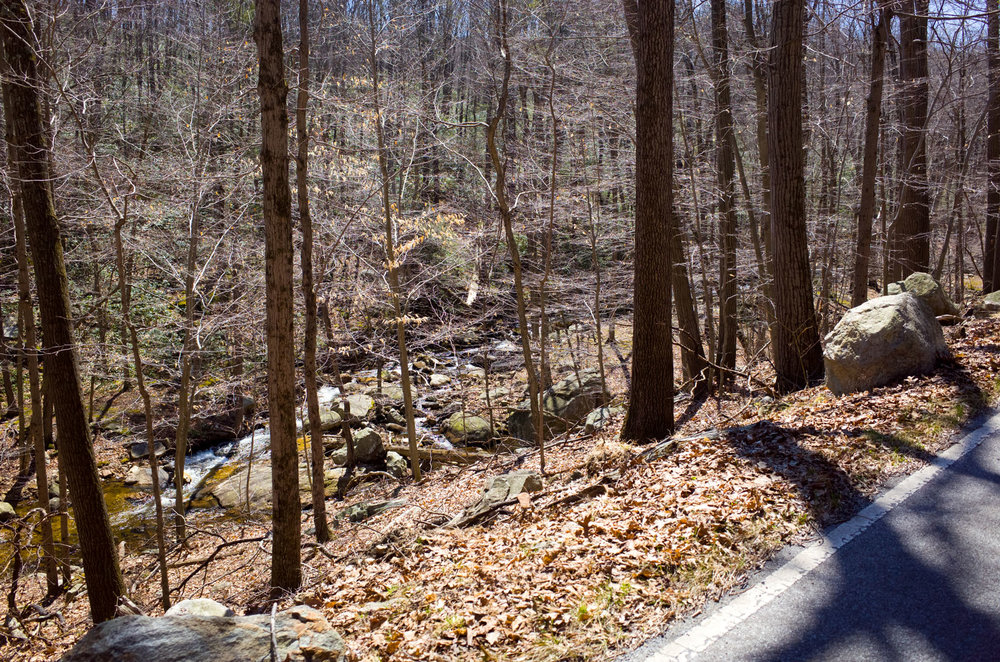 Photo Rhetoric Bear Mountain Spring Classic Recon-5013.jpg