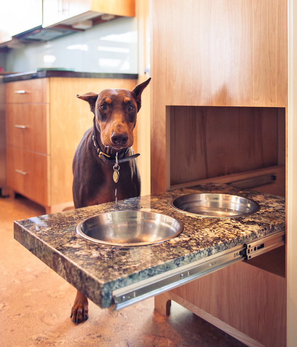 Pull-Out Dog Dish Shelf