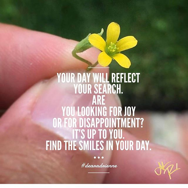 Your day will reflect your search. Are you looking for joy or for disappointment? It's up to you. Find the smiles in your day. #dearadrienne . . . Post inspired by 📸 by @rikkspikks