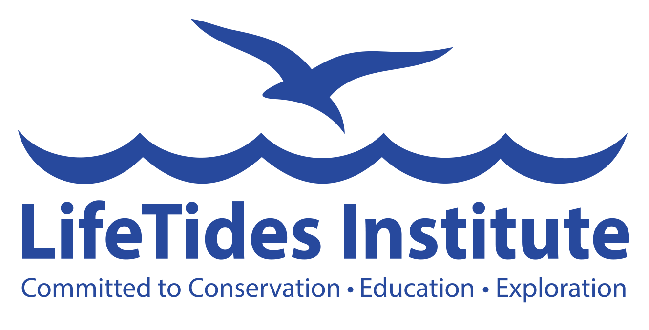 LifeTides Institute
