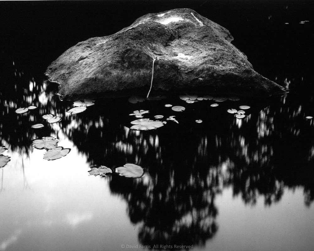 Rock, Floating Hearts, Shin Pond, Maine