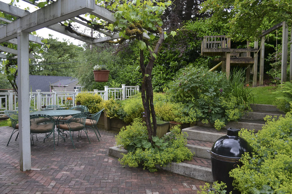 South patio and grape arbor.