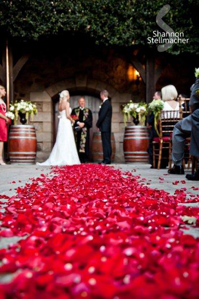 v.sattui-wedding0018.jpg