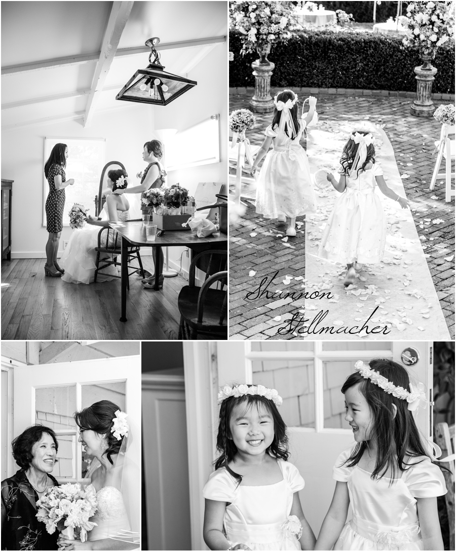 Bay Area Wedding Photographer 1