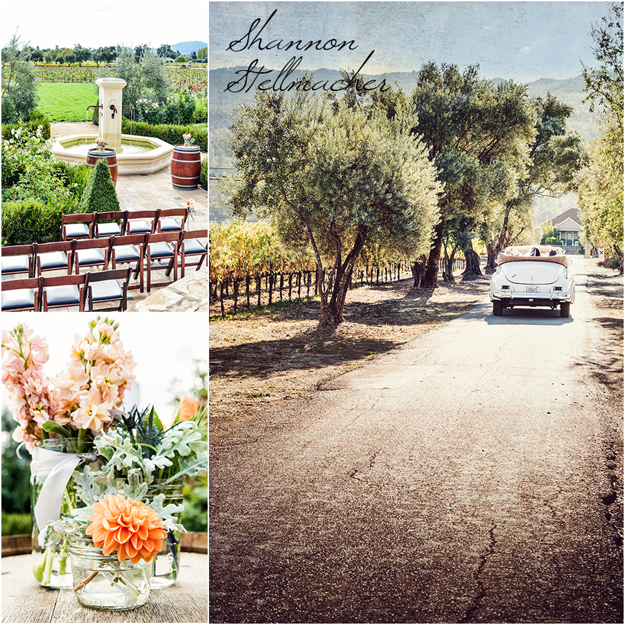 napa wedding photographer v sattui
