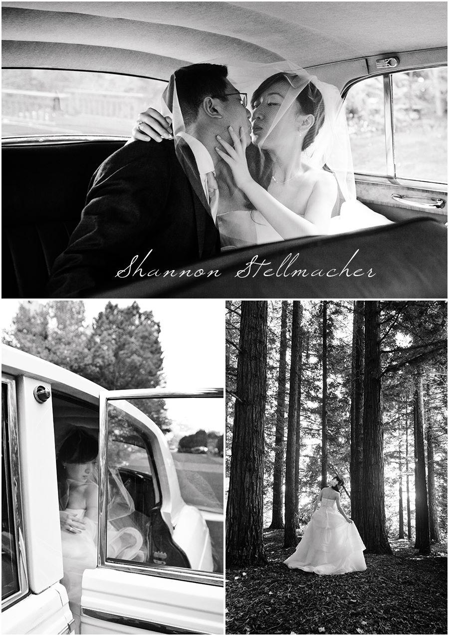 v.sattui-wedding0040.jpg