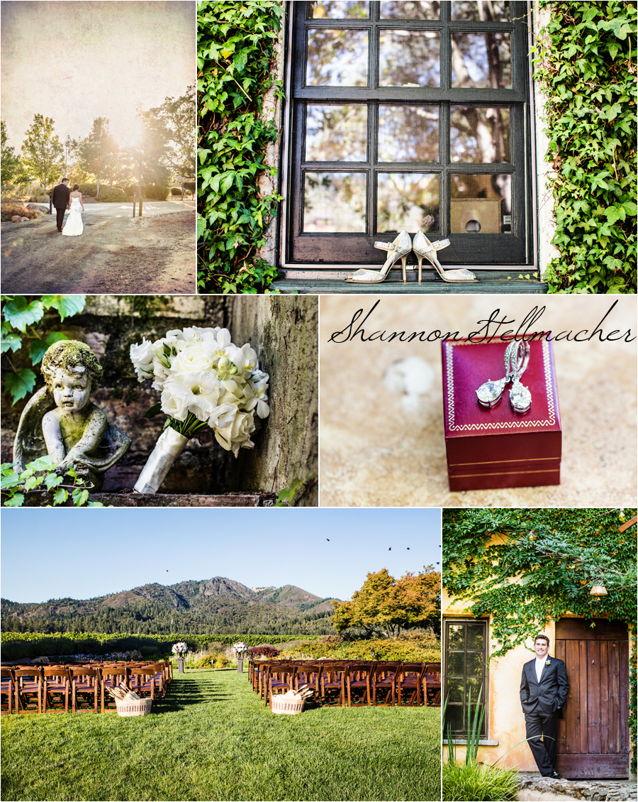 Vineyard-wedding-wine-country.jpg