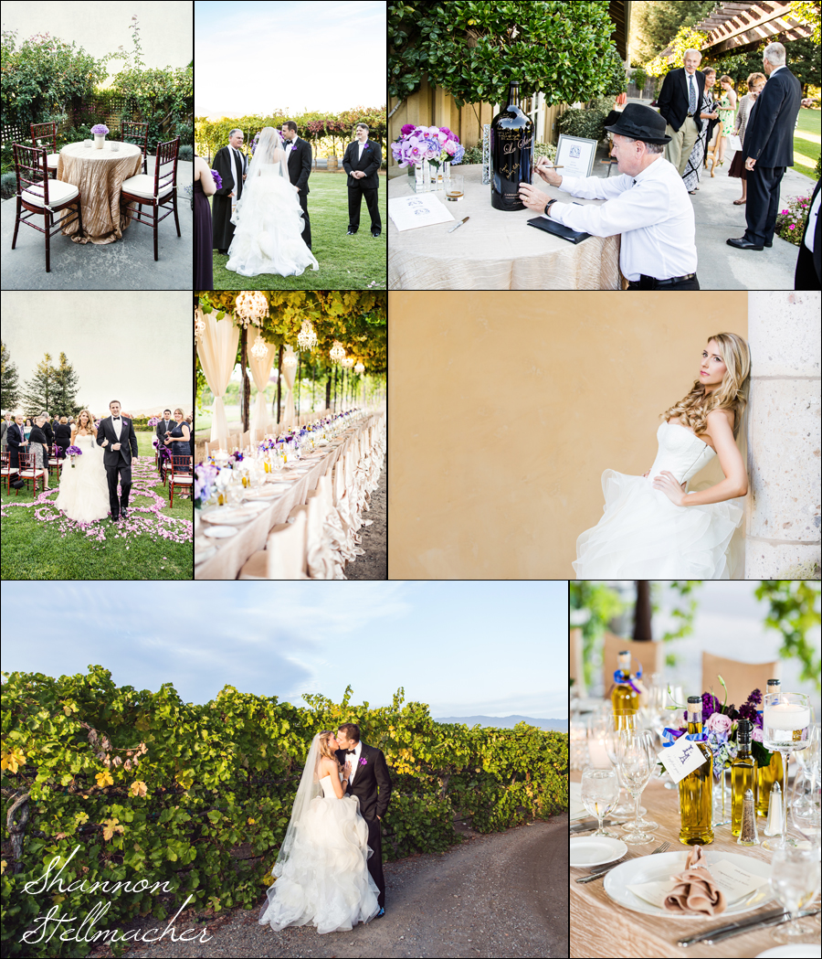 Vineyard Wedding at Trentadue
