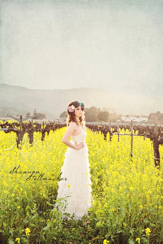 Mustard Fields 1