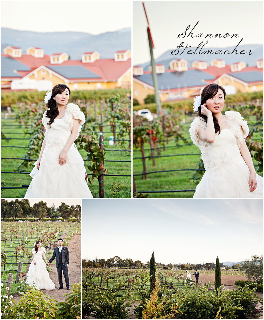 V sattui vineyard wedding photos.jpg