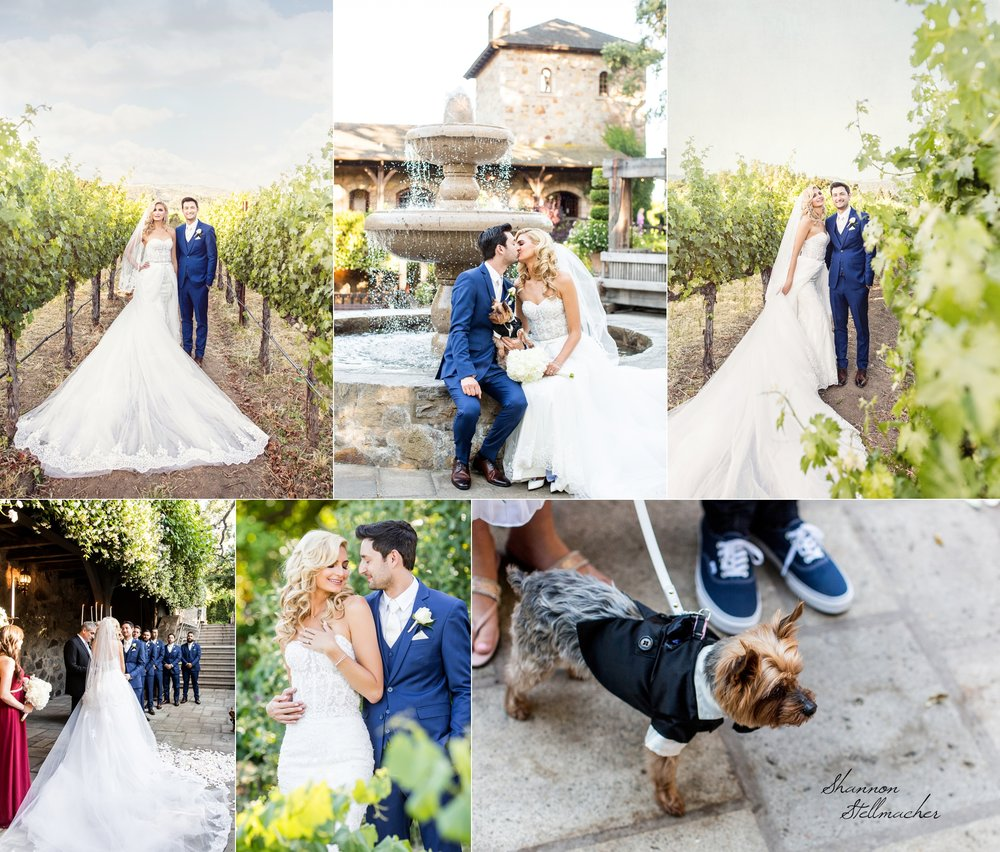 Napa Wedding Photographer 4.jpg
