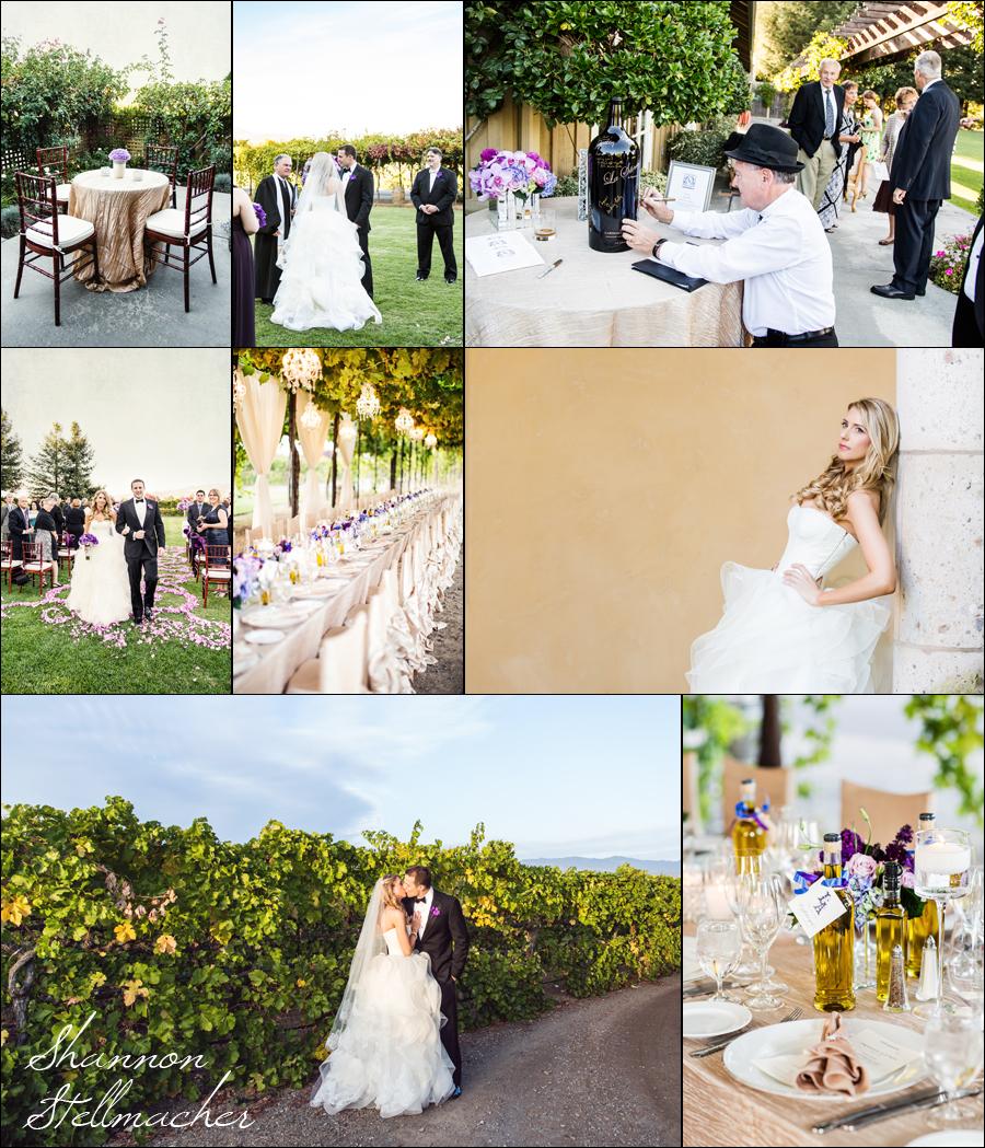 Vineyard Wedding at Trentadue.jpg