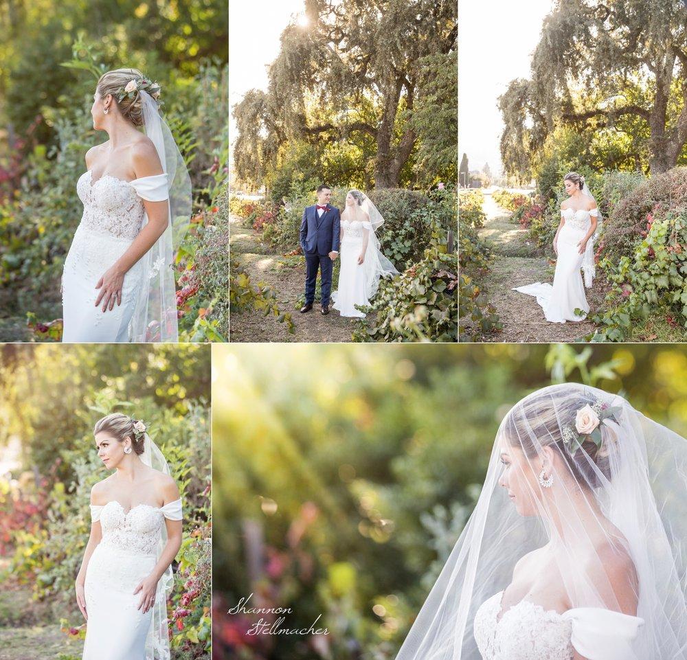 V.Sattui Wedding October 4.jpg