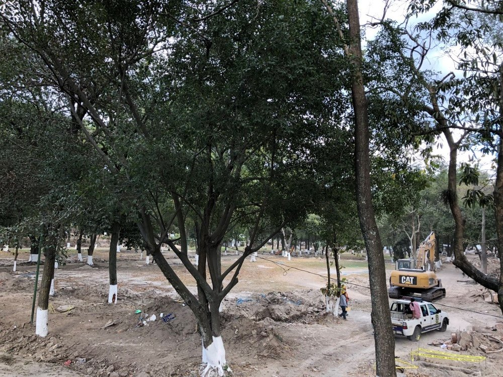 Parque-Cuscatlan-Revitalization.jpg