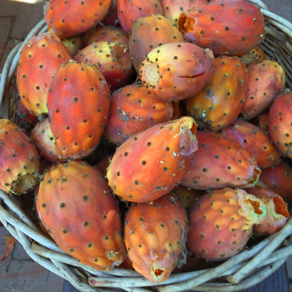Freshly Picked Prickly Pear Tunas.