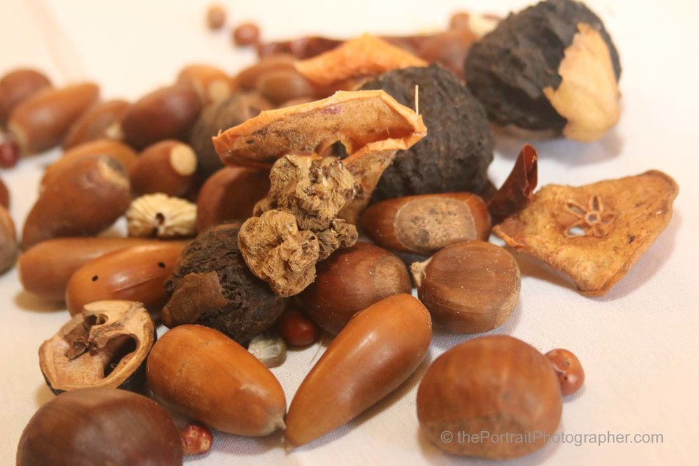 Dried Native Acorns, Black Walnuts, Chestnuts, Sunchokes