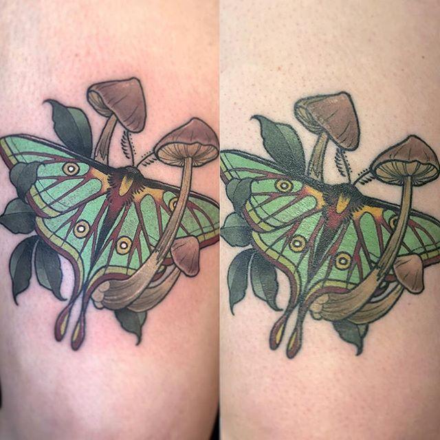 Fresh and healed by @camtattoos ... .. #mothtattoo #mushroomtattoo #tattoos #mirrorgalleryflagstaff #flagstafftattooshop #nau #eternalink #spektraxion