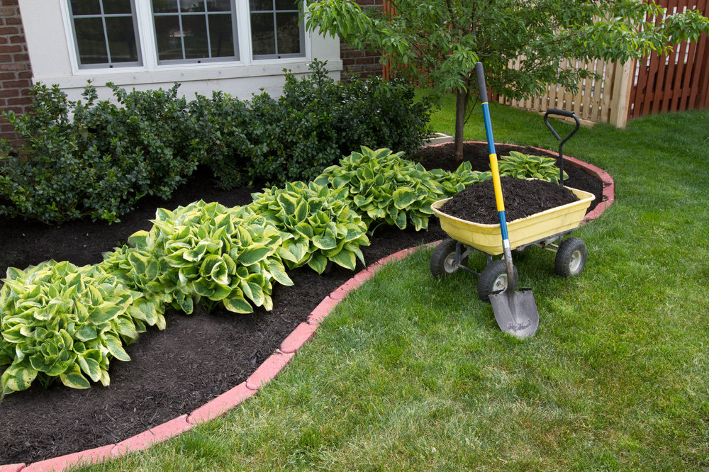 mulched flower beds.jpg