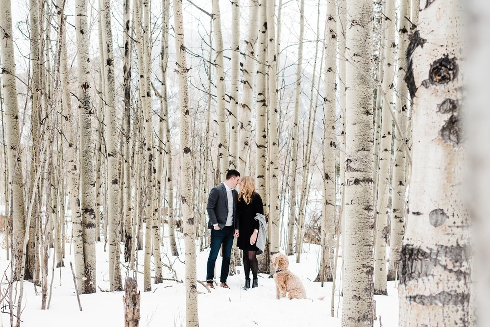 goldendoodle, colorado-wedding-photographer