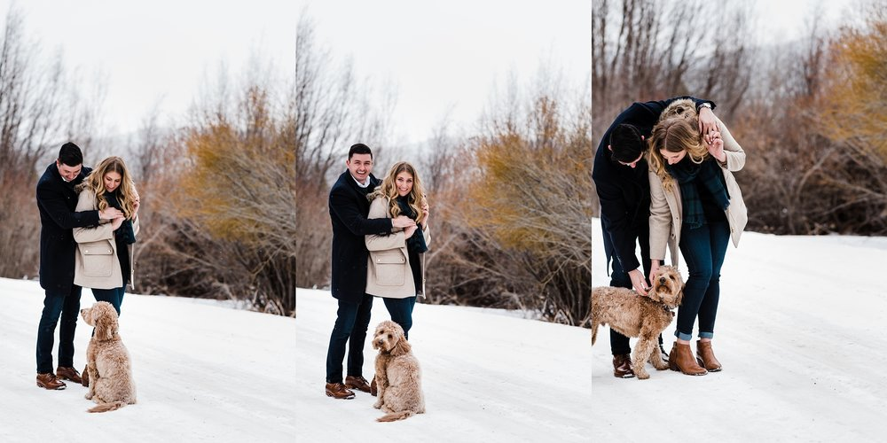 dogs-and-engagement-photos, colorado-mountain-wedding-photographer