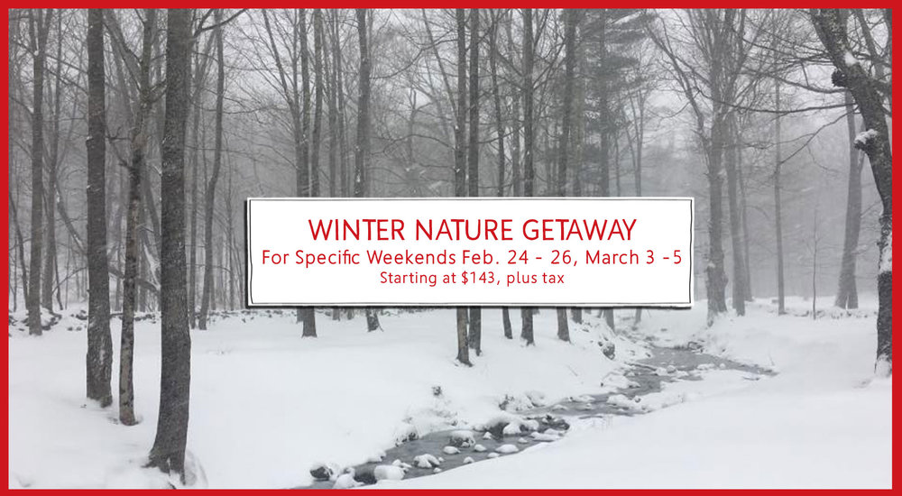 Winter Nature Getaway Special Package at Race Brook Lodge