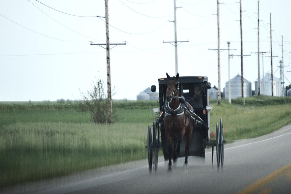"""Horsespeed""  Iowa Photo edit June 2017"