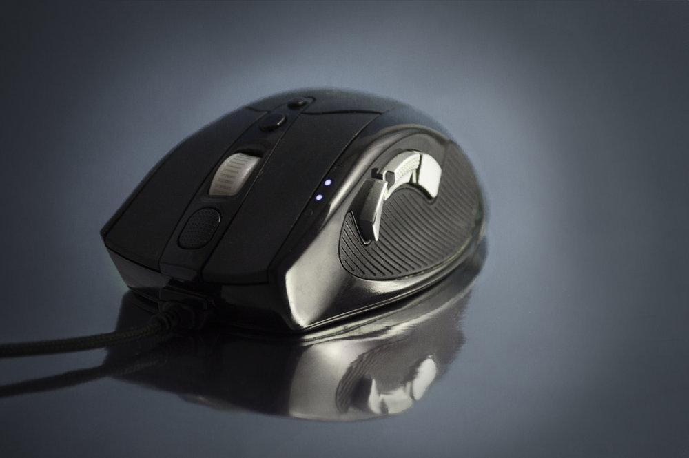 mouse 4.jpg