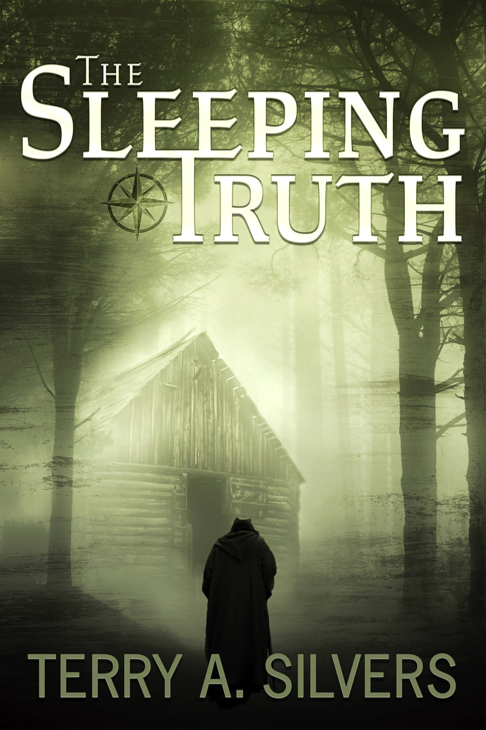 """The Sleeping Truth"" February 2019  Book cover art"