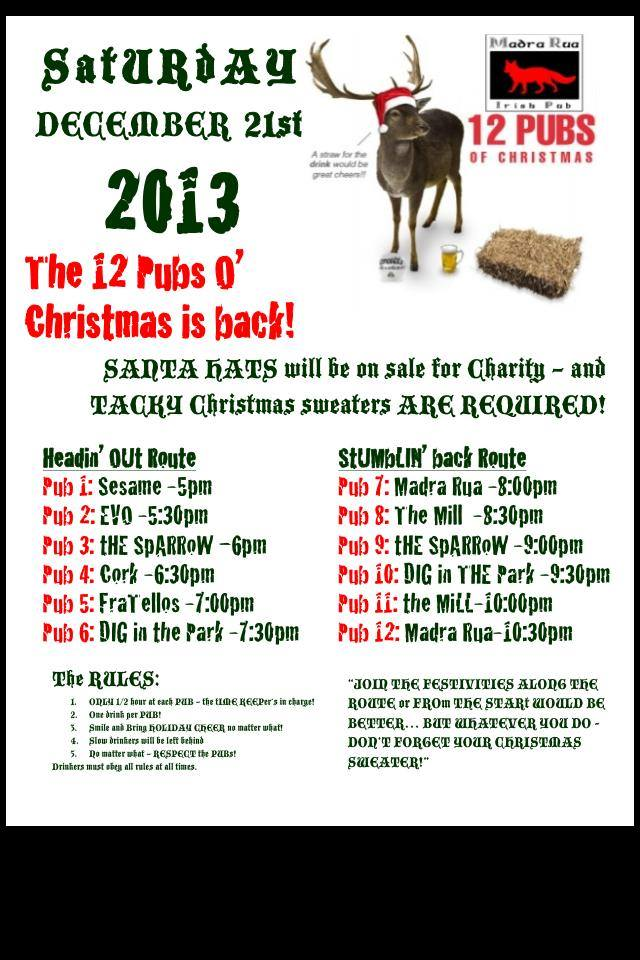 12 Pubs of Christmas @ Madra Rua