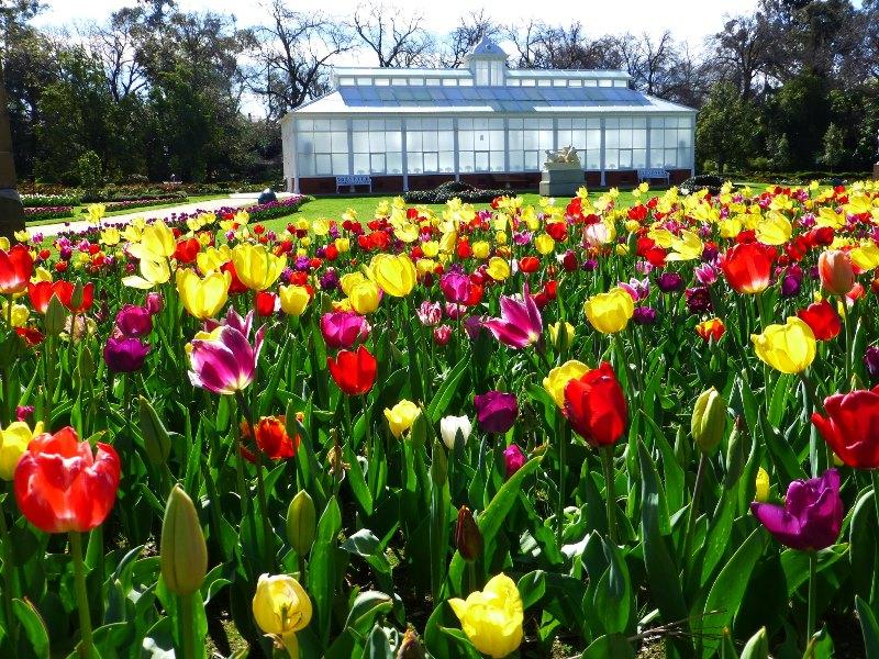 conservatory_gardens.jpg