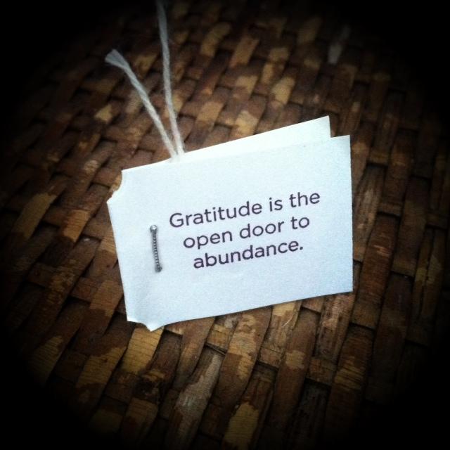 gratitude_yogi-tea.jpg