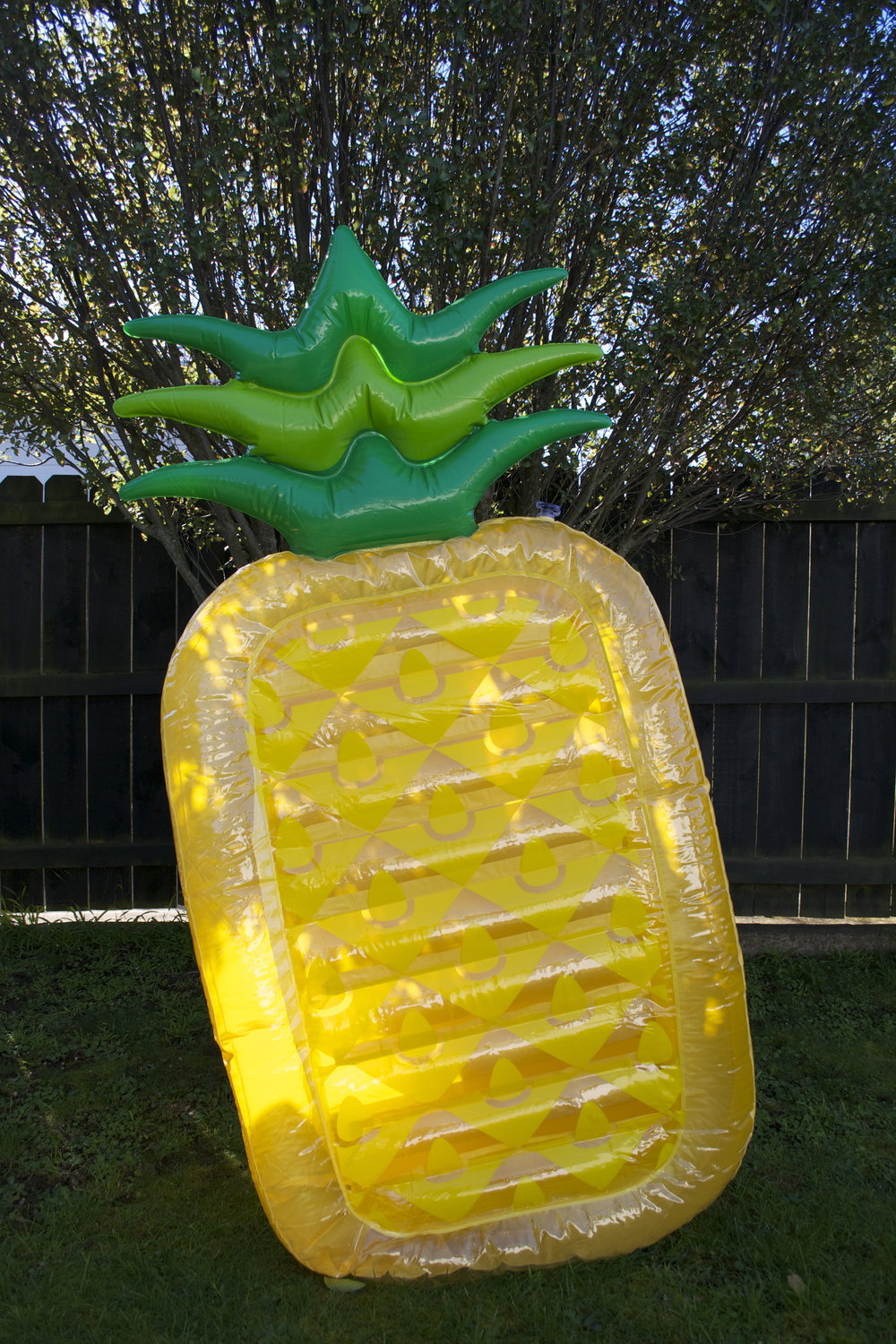 pineapple pool float x1 $8