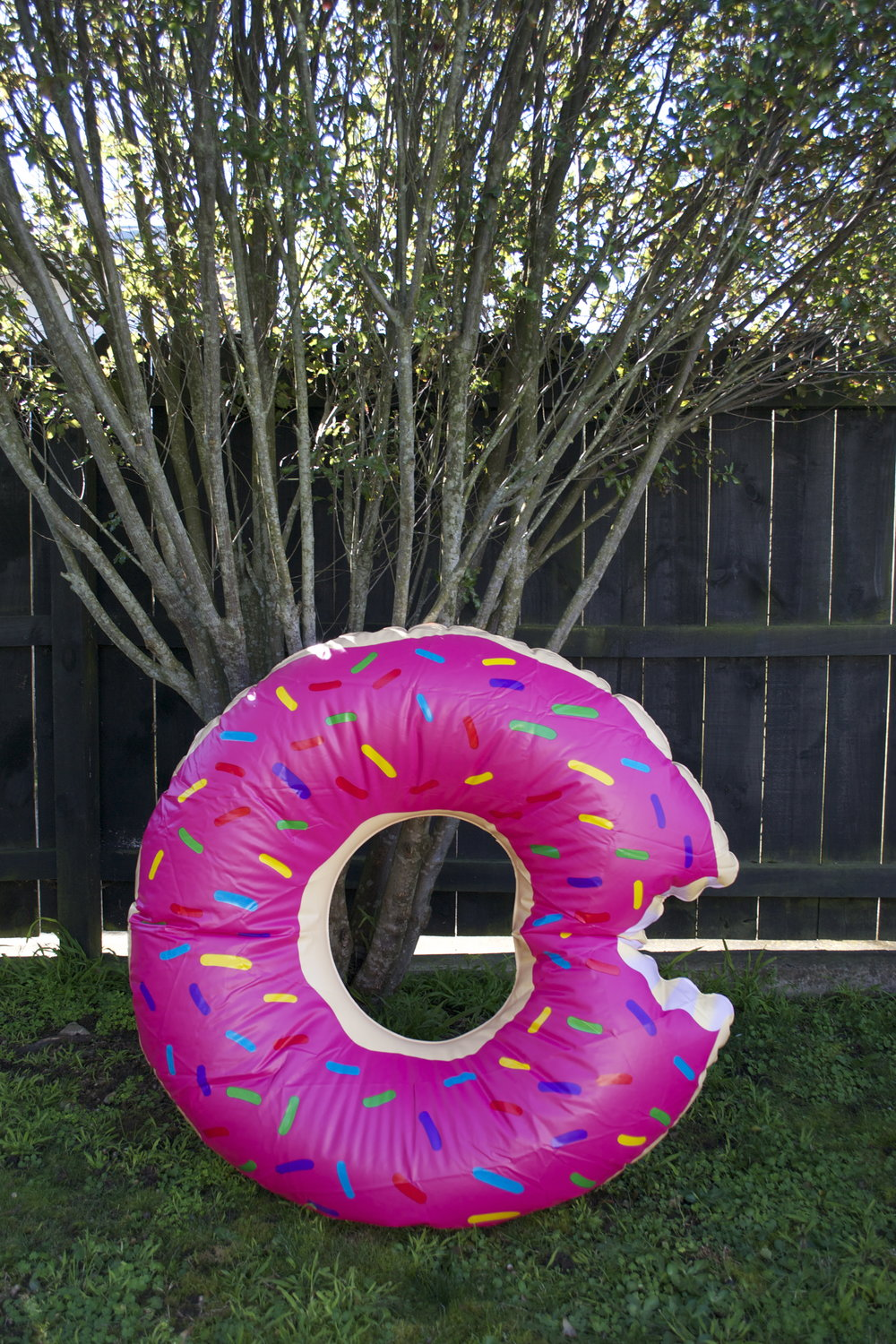 donut pool float x1 $8