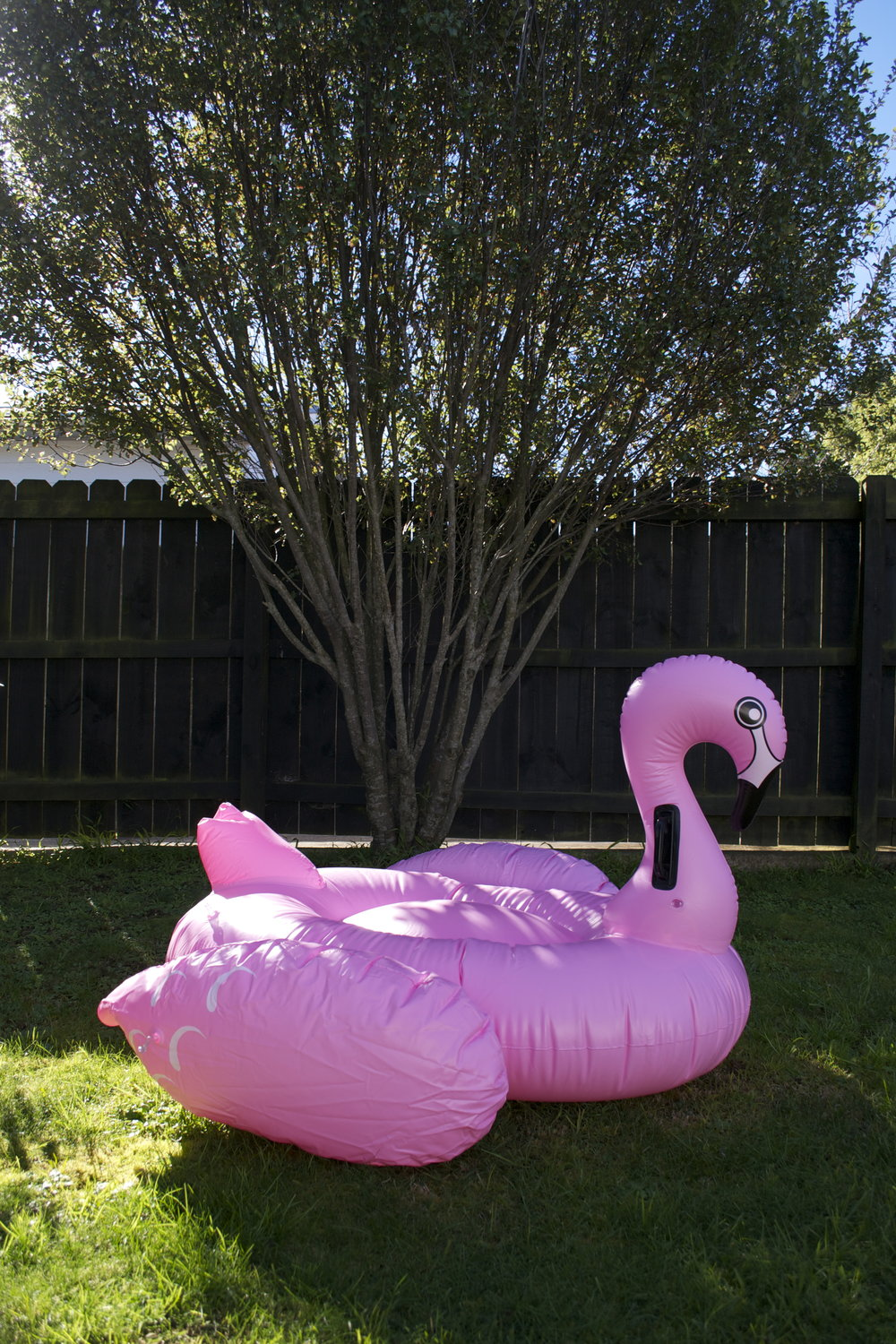 flamingo pool float x1 $8