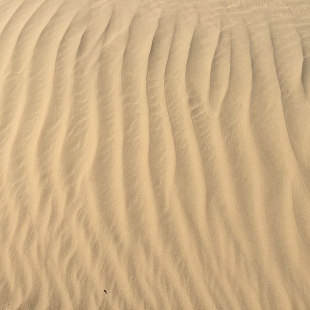 Took a 50km ride on the Al Qudra desert bike path. Windy day whipped sand on to the path & caused beautiful ripples in the desert. Crazy structure coming up out there which is fitting for Dubai (pic4). I enjoyed the serenity of the desert with the backdrop of Um Kulthum playing. Check the route pics. #1loveatl #welovedubai #bikedubai #bikeatl #bikeatlanta #lastexitdubai #alqudracycletrack #desert #50km #dxb #ripplesinthesand #bikelife #umkulthum #strava