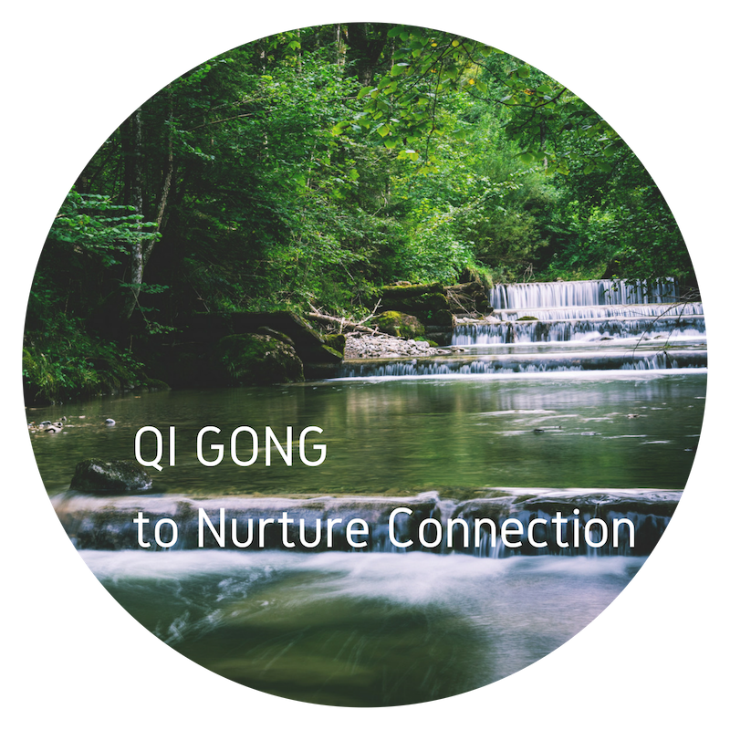 QI GONG to Nurture Connection.png
