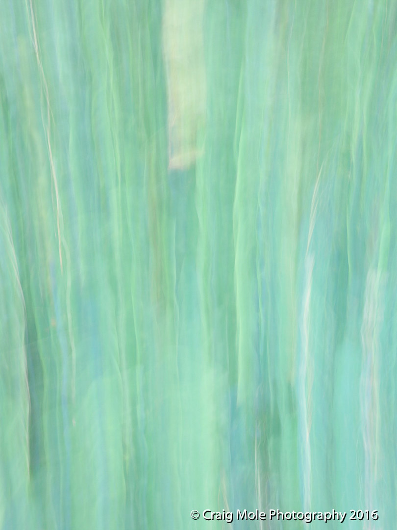 abstracts-3763.jpg