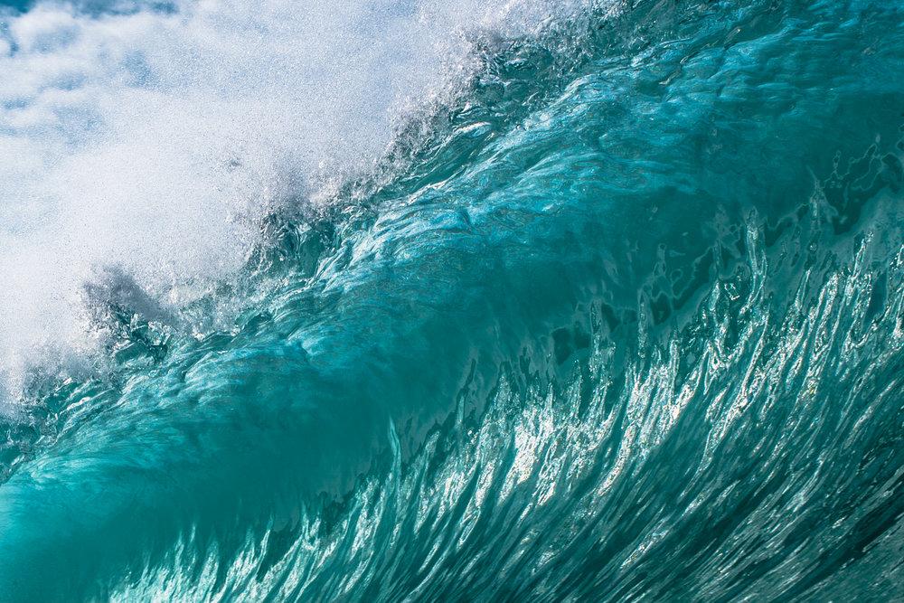 Connor Trimble macro wave photo