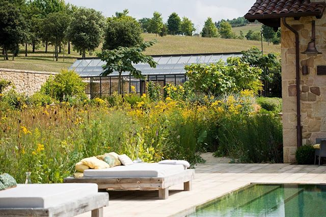 "The ""prairie"" - abuzz with life, light and sheer exuberance - wraps itself around one side of the pool - designed by renowned landscape architect @tomstuartsmith - and a maize for the senses and where the little Ones roam! #spain #prairie #maize #spain #luxury #summer #cantabria #santander"