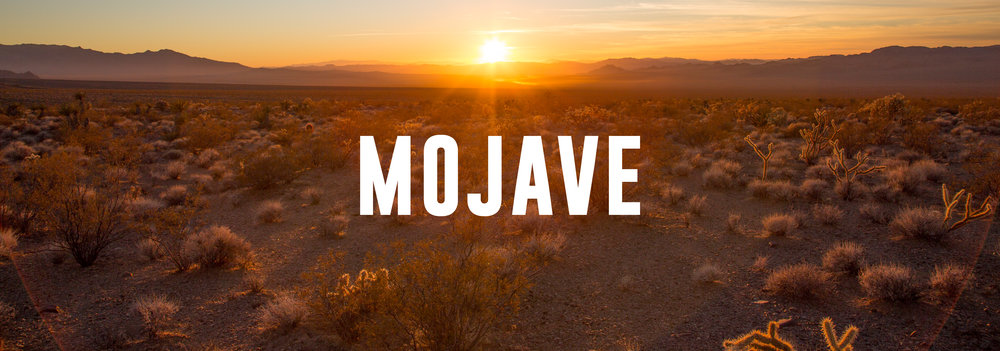 MOJAVE_TEMPLATE-01.jpg