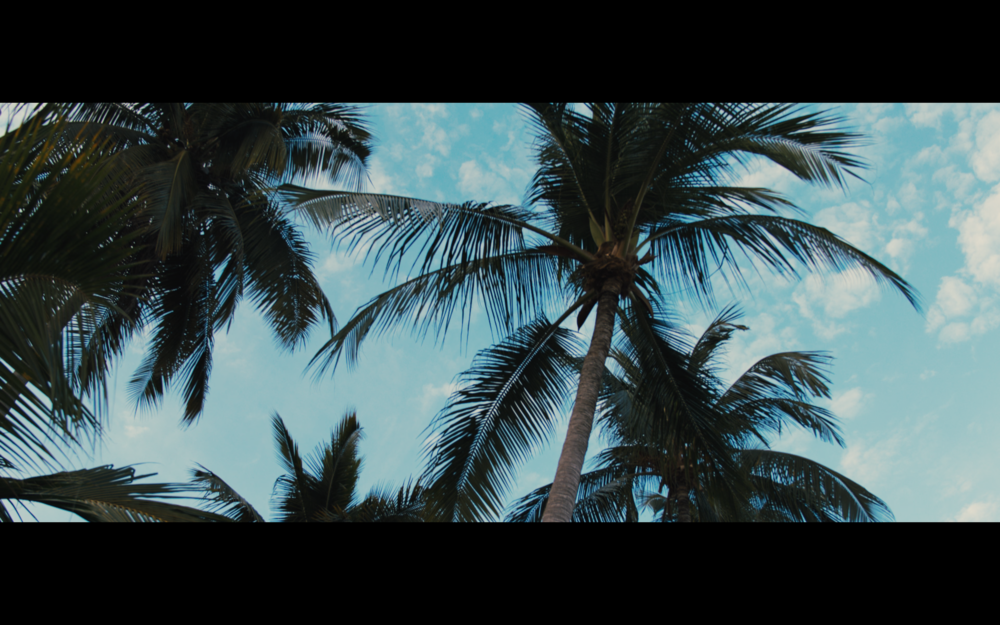 Screen Shot 2018-04-10 at 12.00.50 PM.png