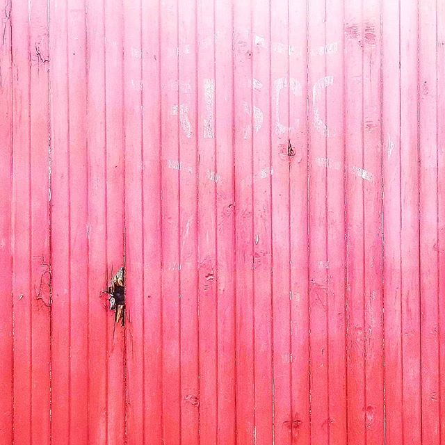 @rottenart  Abandon Pink 2018  #art #found #line #decay #surface #artistsoninstagram #insta #photo #color #rottenart #hide #contemporaryart