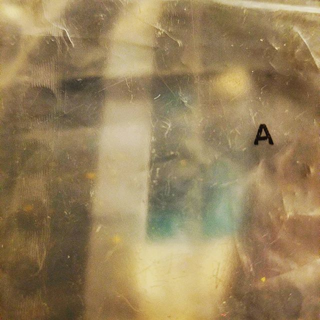@rottenart  A+ Plastic 2018  #art #found #trash #layers #surface #artistsoninstagram #depth #insta #photo #textual #contemporaryart #rottenart