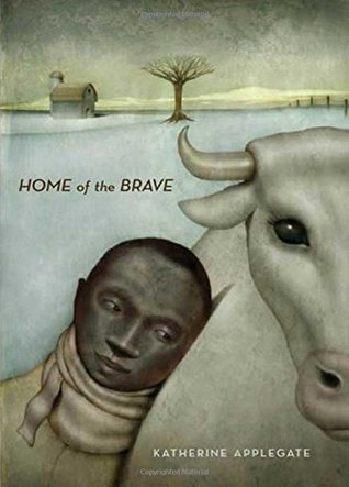 home of the brave cover.
